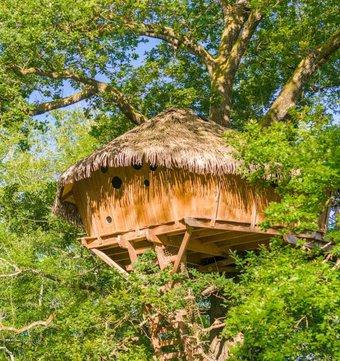 cabane dans les arbres cabane spa des trappeurs la cabane en l 39 air. Black Bedroom Furniture Sets. Home Design Ideas