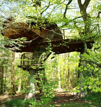 cabane dans les arbres cabane vigie la cabane en l 39 air. Black Bedroom Furniture Sets. Home Design Ideas