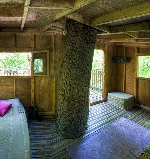 cabane dans les arbres cabane ruche la cabane en l 39 air. Black Bedroom Furniture Sets. Home Design Ideas