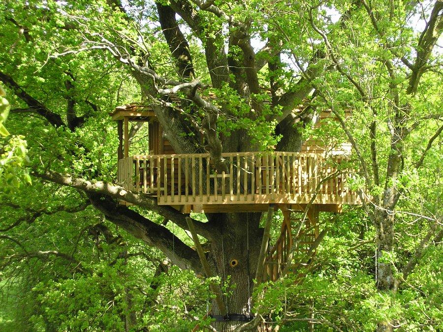 cabane dans les arbres bruit d 39 o la cabane en l 39 air. Black Bedroom Furniture Sets. Home Design Ideas