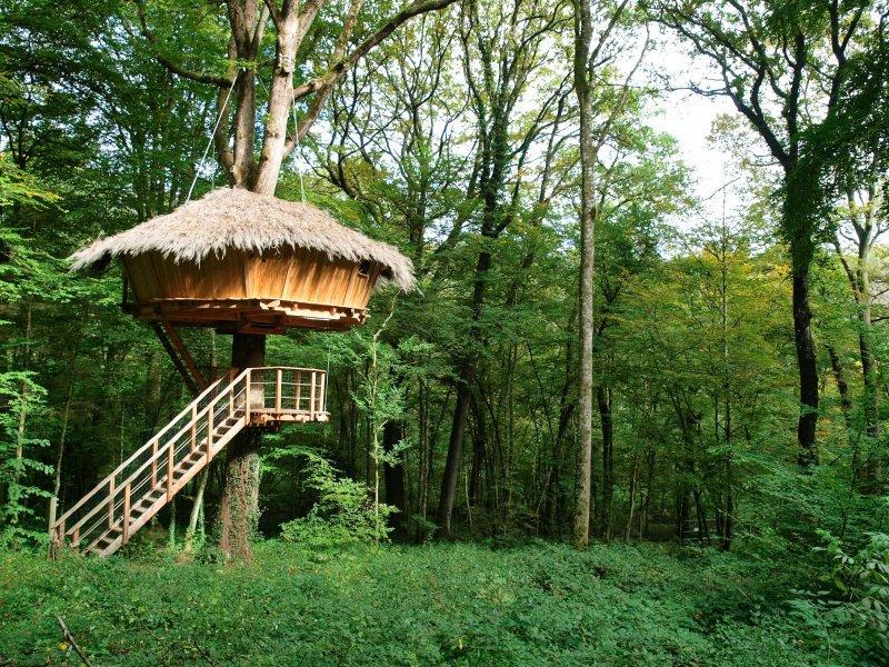 cabane dans les arbres traum la cabane en l 39 air. Black Bedroom Furniture Sets. Home Design Ideas